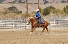 Fix Your Horse's One-Sidedness