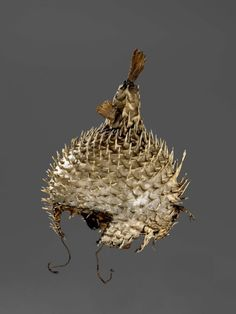 Helmet , Kiribati, 19th century, made of a balloon fish