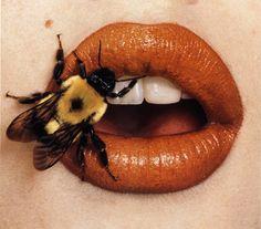 Bee on Lips   Irving Penn