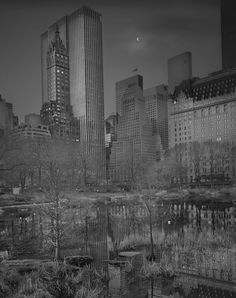 10+ Haunting Photos Of Central Park At Night, Taken By Photographer Suffering From Terrible Insomnia