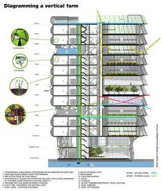 Vertical Farming Building images