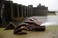 A huge dragon has just appeared on the banks of a Welsh castle. The dragon has smoke-breathing nostrils and terrifying reptilian eyes Swansea, Cardiff, Dragon Medieval, Welsh Castles, Dragons, Saint David's Day, Welsh Dragon, Beautiful Dragon, Snowdonia