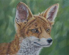 Reynard the Fox by *Sarahharas07 on deviantART