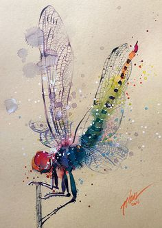 Dragonfly watercolour painting A4 8.3 x 11.7 by tilentiart