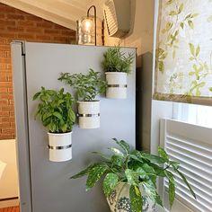 Magnetic self-watering planter. Magnetic self-watering planter. Self Watering Plants, Fridge Decor, Plastic Plant Pots, Decoration Plante, Diy On A Budget, Plant Decor, Indoor Plants, Flower Pots, Diy Home Decor
