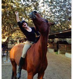 Athila and Mufasa Athila and Mufasa - Art Of Equitation Cute Horses, Pretty Horses, Horse Love, Beautiful Horses, Horse Photos, Horse Pictures, Appaloosa Horses, Horse Girl, Horse Photography