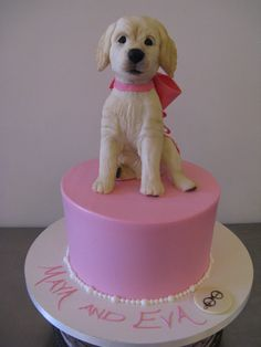 So do you think Eva got both this cake and this puppy for her birthday? What a lucky girl.