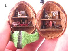 Tiny fairy house in a walnut shell,furnished.