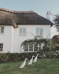 Doesn't get more British than this! 1 2 3 ⭐️ via Beautiful Homes, Beautiful Places, English Countryside, Cozy Cottage, House Goals, Farm Life, Country Life, My Dream Home, Future House
