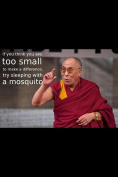 Brightnezz: Dalai Lama and a mosquito