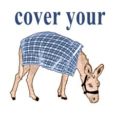 cover your ass Blanket Cover, Unique Gifts, Crochet Hats, Humor, Original Gifts, Knitting Hats, Cheer, Humour, Ha Ha