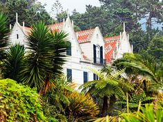 The World's Most Beautiful Botanical Gardens  Monte Palace Tropical Garden, Portugal
