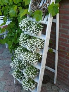 Great plant stand