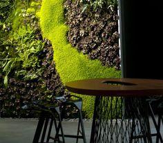 Vertical gardens by Mr. Green building vertical gardens mr.green
