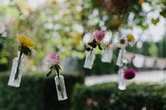 hanging flowers in b