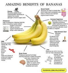 bananas benefits, beating cancer, 30 bananas a day, banana smoothies, power of bananas, smoothie benefits, banana benefits, benefits of bananas, banana health benefits