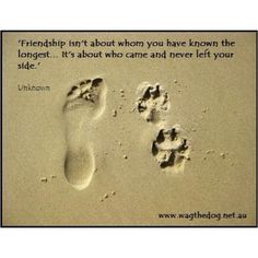 this is the most true saying about what being a friend means, that i have ever heard