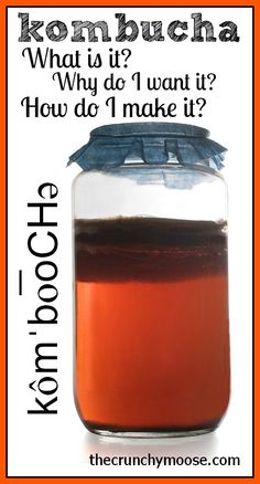 Kombucha 101 - What is it? How do I say it? Why do I want it? How do I make it? thecrunchymoose.com