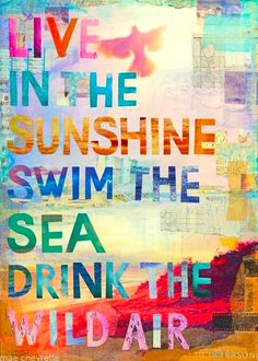 Our top 3 Summer plans: Live in the sunshine, swim the sea & drink the wild air #inspiration