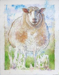 'Woolly Sheep' Watercolour Mijello_MissionGold Class and Ink-pen on Saunders Waterford by St Cuthberts Mill, 38 x 48 cm St Cuthbert, Sheep And Lamb, Watercolor Techniques, Petra, Watercolour, Moose Art, Saints, Stamps, My Arts