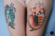 Lovely red panda.