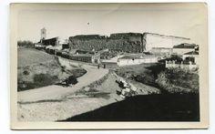 https://flic.kr/p/HmJ7QT | Escalona del Alberche (Toledo): extramuros y murallas | Título: Escalona del Alberche (Toledo)  Publicación:  [S.l.] : Laboratorios Fotográficos Alberto, [1960]  Descripción física: 1 fot. : b/n(tarjeta postal) ; 9x14cm. Signatura: POS 4491