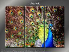 Peacock Themed Bedroom Wall Art: Framed Huge 3 Panel Bird Peacock Giclee Canvas Print