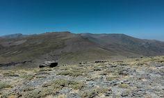 Cerro el Gallo,Pepita Estévez