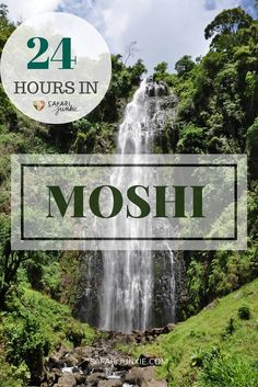 24 hours in Moshi, Tanzania -things to see and do when you only have a day in Moshi