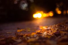 The Light of Fall by John Ott on 500px