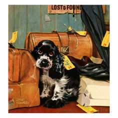 """Butch in Lost & Found,"" January 29, 1949 Giclee Print by Albert Staehle at AllPosters.com"