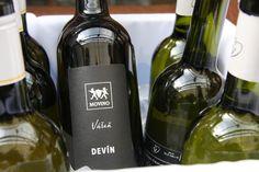 Krst knihy SLOVAK WINE GUIDE Vladimíra Hronského ...... www.vinopredaj.sk ........................... #kniha #book #wine #guide #slovakwineguide #primi #medusagroup #medusa #primimichalska #vladimirhronsky #krst #karpatskaperla #movino #vinomagula #magula #vinodudo #vinarstvo #winery #vino #wein #wine #slovensko #slovakia #slovak #elesko #ostrozovic #matysak #inmedio #vinoteka #wineshop #devin #frankovka