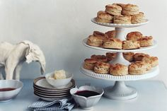 241183_crusty-buttermilk-biscuits_6x4.jpg / Photo by Mikkel Vang