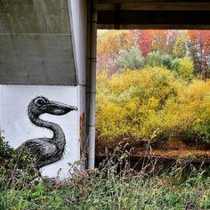 #ROA in the #autumn - #Maldegem #Belgium #streetart #graffiti #streetartbel #streetart_daily #urbanart Tag Art, Urban Art, Murals, Belgium, Graffiti, Street Art, Autumn, Artist, Painting