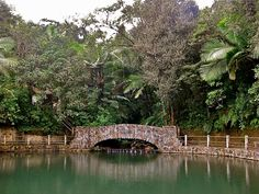 Bano Grande in El Yunque Forest, the tropical paradise in Puerto Rico