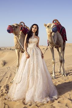 Beautiful photoshoot with camels  Al Awir desert Dubai photography  Wedding dress by Sylwia Romaniuk  Arab Fashion Week 17'