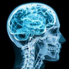 Las multimesas pueden traer serios problemas a tu cerebro... http://www.allinlatampoker.com/las-multimesas-pueden-traer-serios-problemas-a-tu-cerebro/