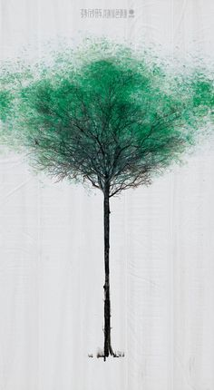 Pedestrians Create Leaves On Trees By Walking Across Large Canvases On The Street
