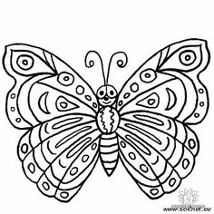 baroque natura - butterfly | free printable coloring pages ... - Butterfly Printable Coloring Pages