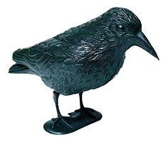 Windhager Garden Raven, 37cm, Black * Read more info by clicking the link on the image. #GardenDecor