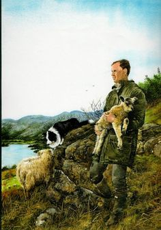 Shepherd with his flock-Border collie-watercolour