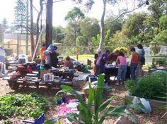 Trade Day at Kariong Eco Gardens