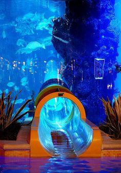 A lâmina de água através de um aquário, Hotel Golden Nugget em Las Vegas.