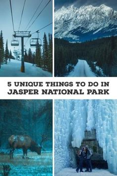 5 Unique Things To Do In Jasper National Park In The Winter   What To Do In Jasper   Top Things To Do In Jasper National Park   Things To Do In The Canadian Rockies   Canadian Rockies Travel Tips   Things To Do In Canada   Canada Travel Tips   Banff And Jasper Travel