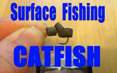 Catch catfish with lures on the surface. Had fun surface fishing and sight casting to channel catfish using Enterprise 6 mm artificial pop up pellets (http:/. Catfish Bait, Catfish Fishing, How To Catch Catfish, Channel Catfish, Before Sunset, Gone Fishing, Homestead, Hunting, Southern