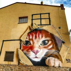 Oh 😯 #TheCat Street Art (Best of) ❤️