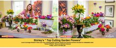 "SET YOUR DVR'S FOR FRIDAY! If you love to create flower arrangements, grow a summer ""cutting garden!"" Shirley shares her favorite summer annuals that can stand up to the heat and look cool in floral design! Home & Family on Hallmark Channel USA, 10am pst. EdenMakers.com"
