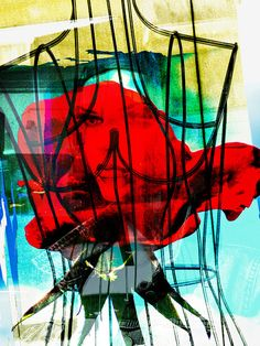 Captured face and rose