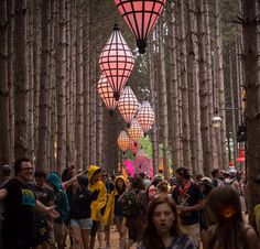 #PLUR #ElectricForest #Rave #Insomniac #WideAwake