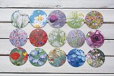 Geschenkanhänger Anhänger Blumen, Blüten, Pflanzen Fotogr... http://www.amazon.de/dp/B01C37YEOA/ref=cm_sw_r_pi_dp_k44gxb0DGK778